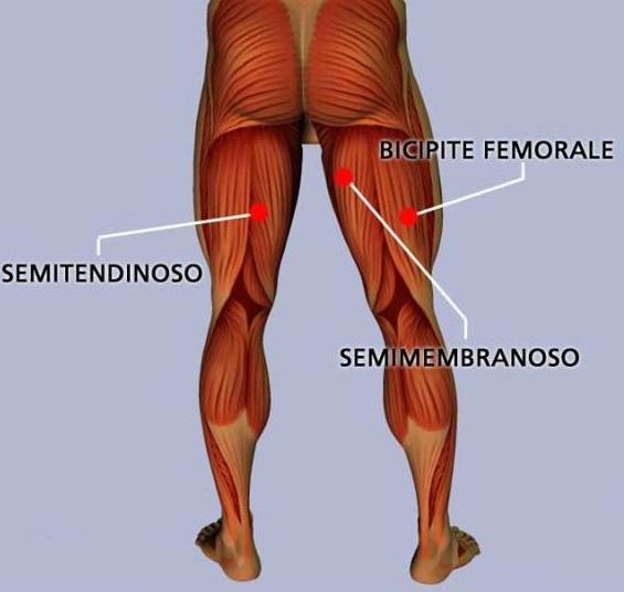 Come curare una contrattura muscolare - ENDUmag