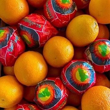 arance bionde sicilia