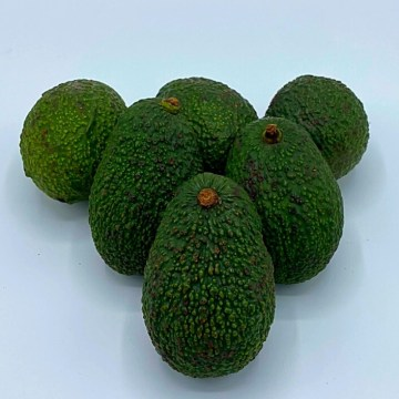 avocado biologico