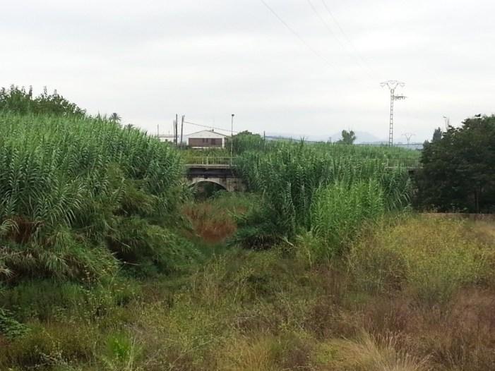 Molt a prop d'iniciar la segona fase de la recuperació del Barranc de Barxeta