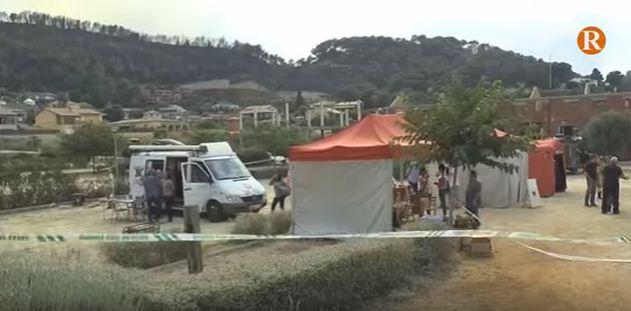 Alzira, Carcaixent i la Barraca reclamaran al Govern la declaració de zona catastròfica