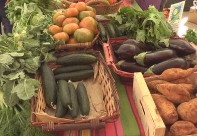Els productors opinen sobre els tres mesos de Mercat Ecològic a Alzira