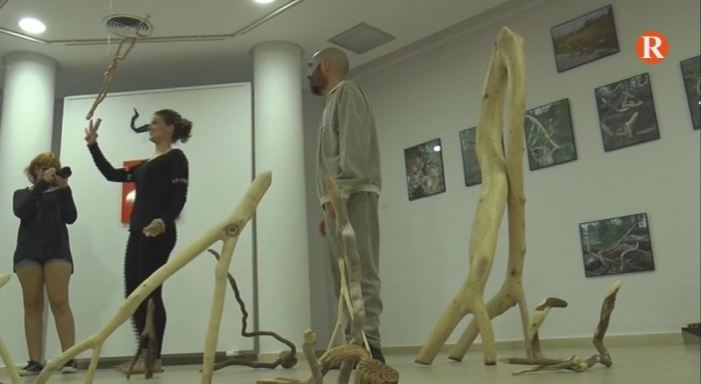 """L'Alcúdia gaudeix de l'acció sonora """"Harmònic"""""""