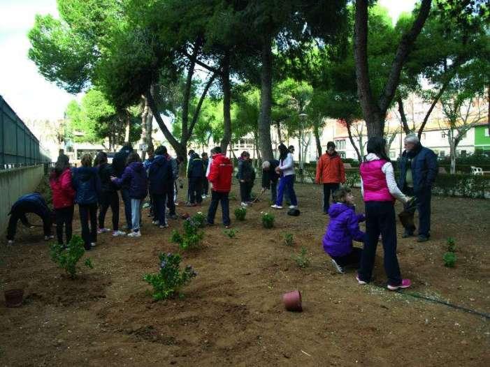 El diumenge 4 de febrer, un arbre t'espera a Almussafes