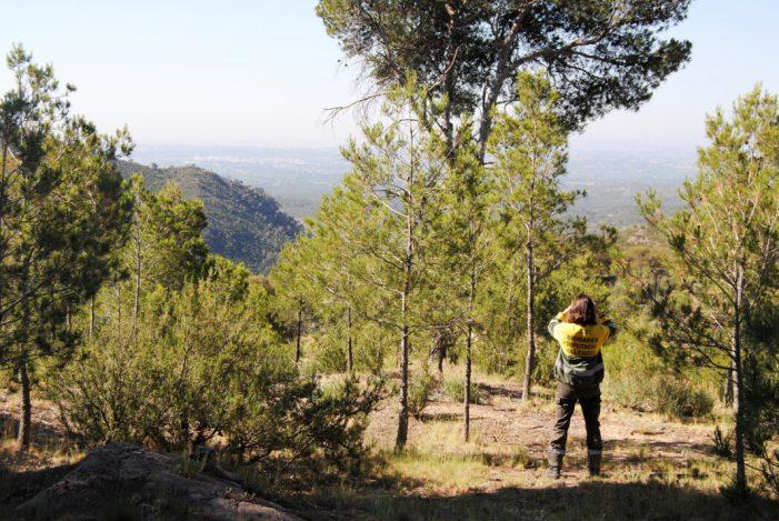 La Diputació consolida el model de treball de les seues brigades forestals sobre la base de criteris objectius