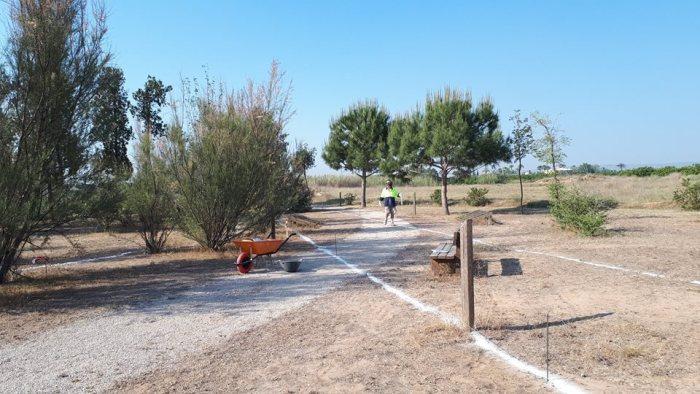 Comencen les obres de regeneració de la zona d'oci del riu Magre a l'Alcúdia