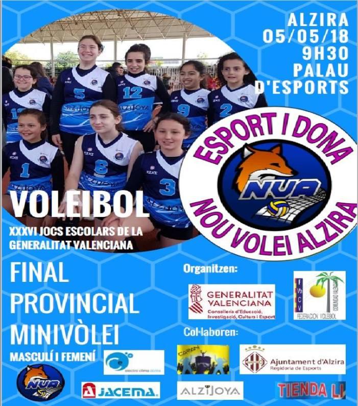 Alzira acull la final provincial de minivòlei dels Jocs Escolars de la GV