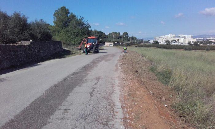 La Regidoria d'Agricultura neteja els camins rurals que donen accés al cementeri