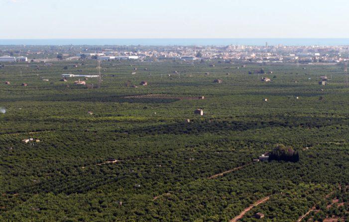 TornarEl Consell transfereix 73,7 milions d'euros d'ajudes de la PAC al sector agrari