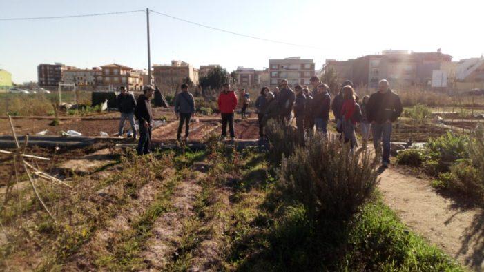 Alboraia engega un curs sobre agricultura ecològica als horts socials