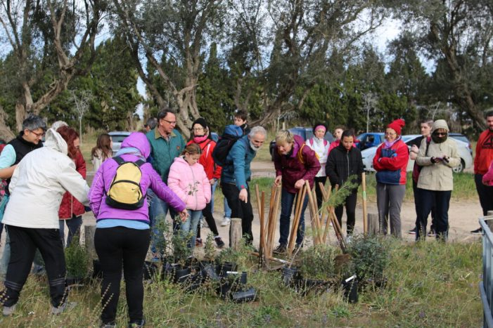 Sueca actua en la Muntanyeta dels Sants per commemorar el Dia de l'Arbre