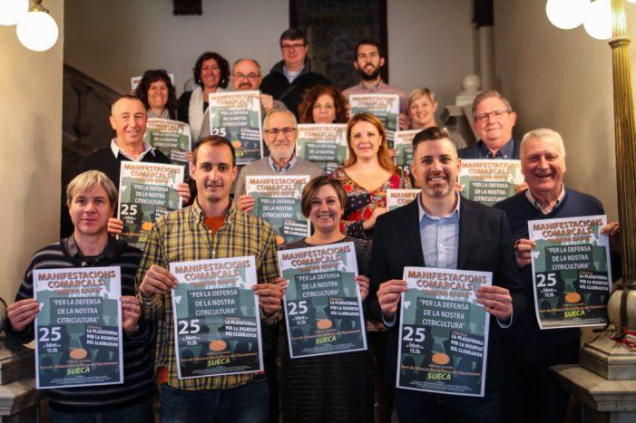 La Ribera Baixa s'uneix en defensa de la citricultura valenciana