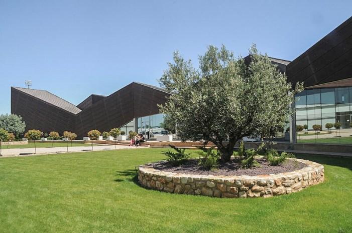 La Universitat de València i l'Ajuntament d'Alzira convoquen el XXV Premi Europeu de Divulgació Científica «Estudi General»