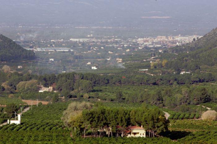L'Ajuntament d'Alzira torna a autoritzar les cremes agrícoles