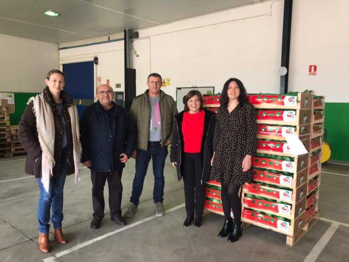 L'Ajuntament del Perelló sol·licita ajudes per als agricultors pels danys patits