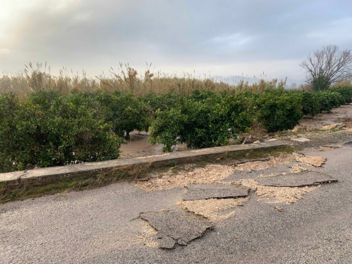 Alberic exigeix exempcions fiscals i ajudes econòmiques per als agricultors afectats per les inundacions