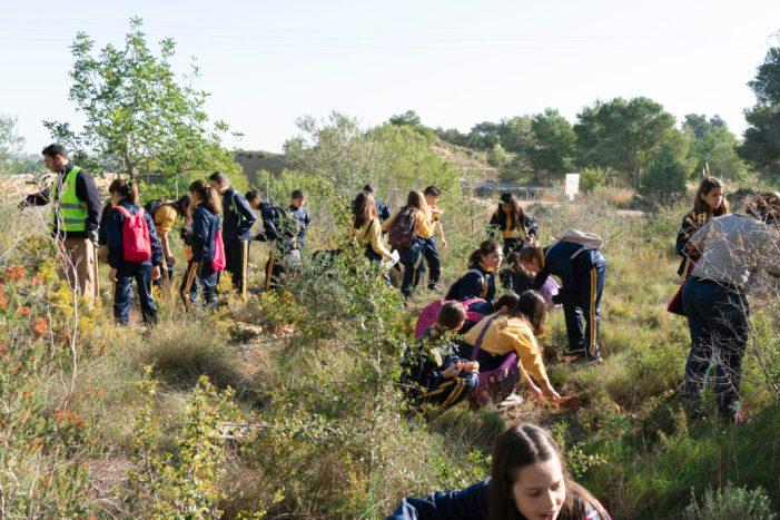 Picassent celebra la setmana de l'arbre amb l'alumnat del municipi