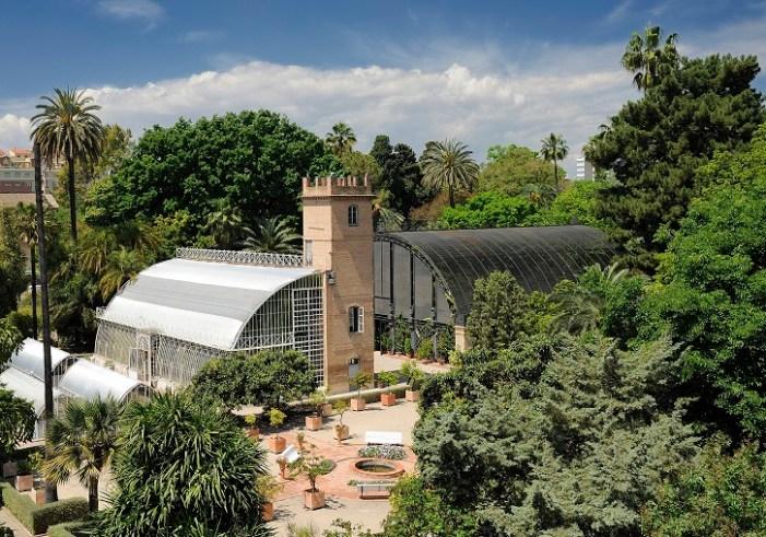 La Universitat de València i la Generalitat acorden obrir el Jardí Botànic per a persones amb discapacitat intel·lectual