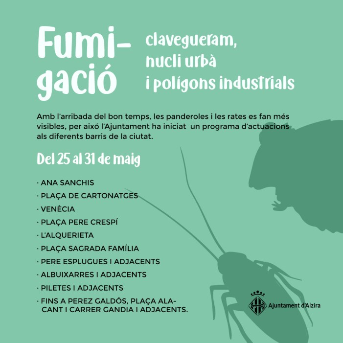 Alzira enceta una campanya de fumigació del clavegueram contra panderoles i rates