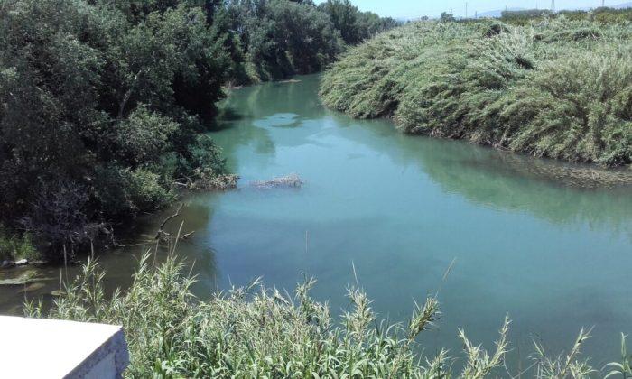 Alzira denuncia el mal estat de les aigües del Barxeta i el riu Verd
