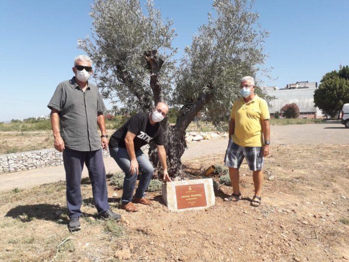 L'Ajuntament d'Alzira col·loca una placa en homenatge al contacontes Llorenç Giménez