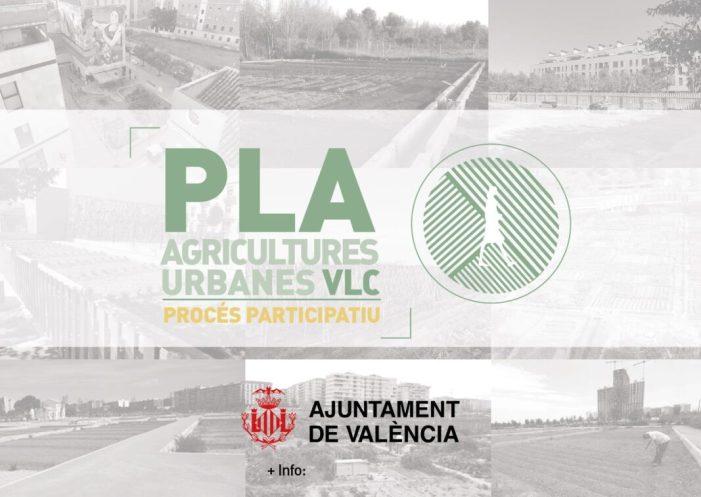 L'Ajuntament de València impulsarà un pla d'agricultures urbanes per recuperar i preservar els vincles amb l'horta i potenciar el model agroecològic