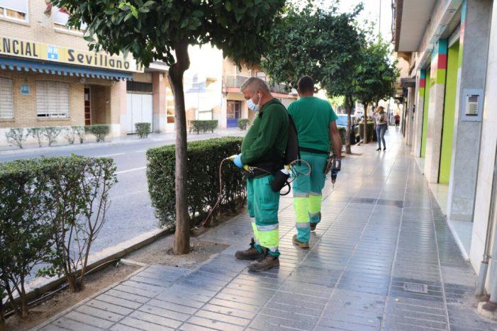 L'Ajuntament de Torrent aplica el nou tractament de endoterapia en els tarongers de Bisbe Benlloch i Gómez Ferrer