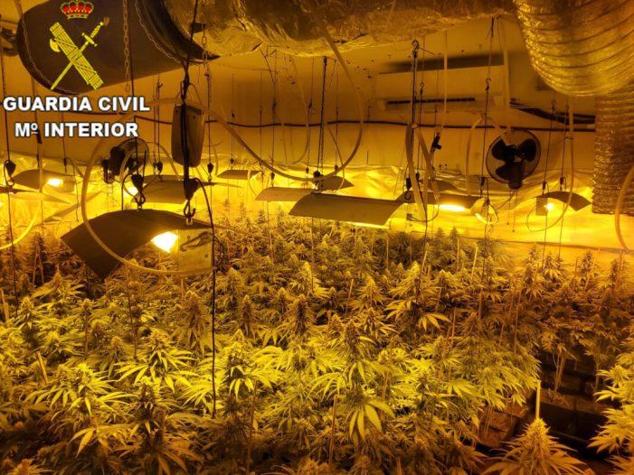 La Guàrdia Civil conjuntament amb Policia Nacional i Policia Local de Godelleta, han detingut a 3 persones i investigat a 2 pels cultius de més  de 1400 plantes de marihuana  en la localitat de Godelleta