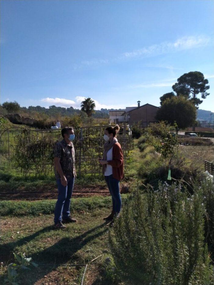 Veïns i veïnes d'Alzira es formen en agricultura ecològica i sostenible