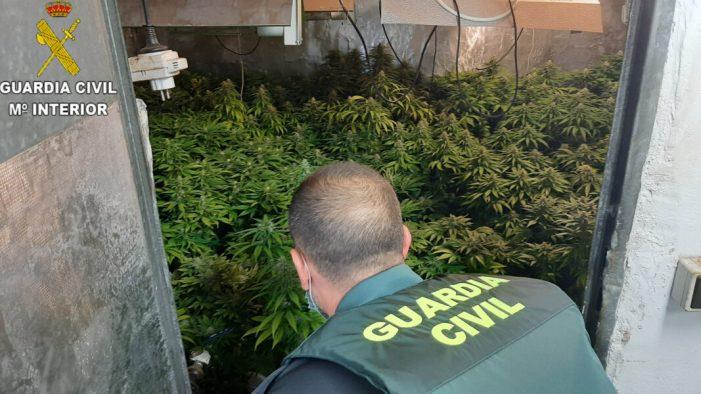La Guàrdia Civil procedix contra 7 persones implicades en el cultiu, elaboració  i tràfic de drogues a la província de València