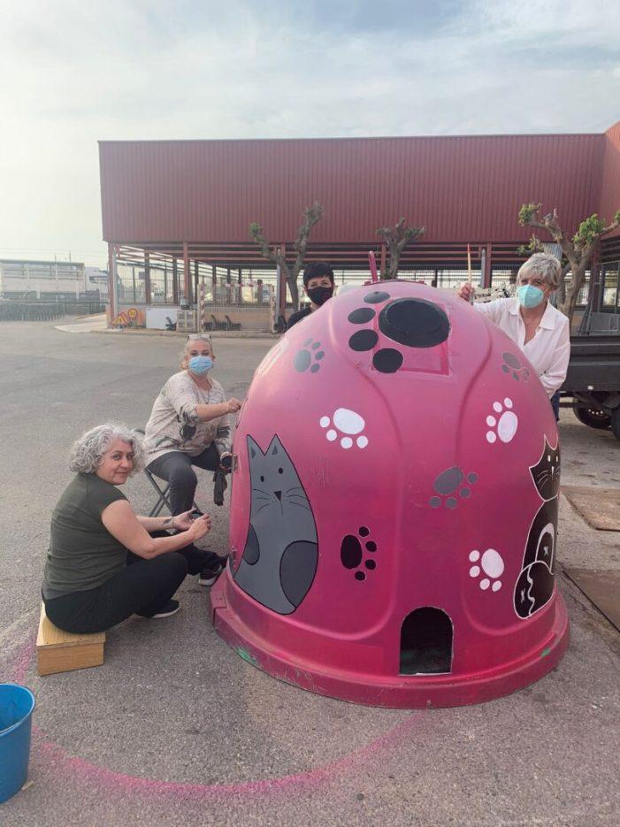 Carcaixent condiciona contenidors com a refugis per a gats