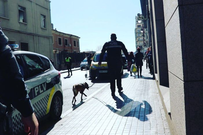 Tres nous equips s'incorporen hui a la unitat canina de la Policia Local de València