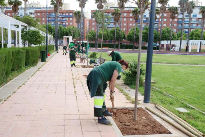 L'Ajuntament d'alaquàs planta 22 nous arbres i arbusts al parc de la Sequieta