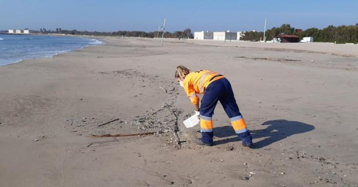 L'Ajuntament de València incrementa sensiblement el dispositiu de neteja a les platges durant la temporada alta
