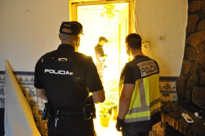 La Policia Nacional desarticula una organització criminal dedicada al cultiu de marihuana i a delictes contra el patrimoni