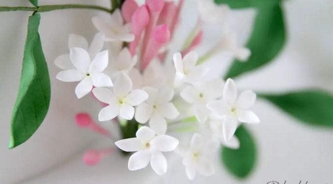 Eine Hochzeitstorte mit Jasminblüten aus Zucker