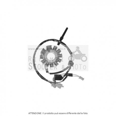 Statore Completo Sym Hd E2 Evo 200 05/06 163067#8