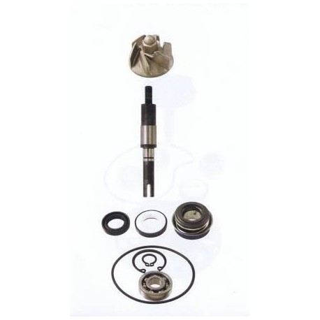 Kit Revisione Pompa Acqua Honda Sh 125 150