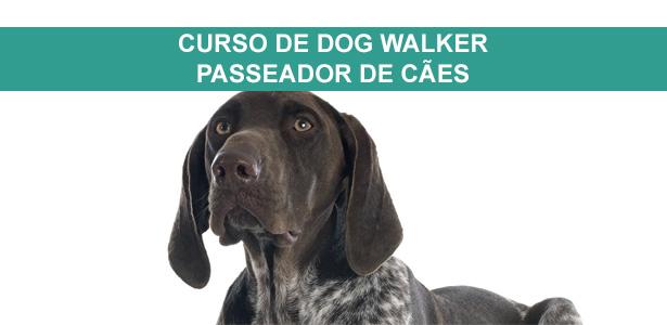 Curso de Dog Walker, cursos de adestramento e comportamento