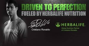 herbalife network marketing