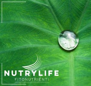 integratori aloe nutry life xenia global