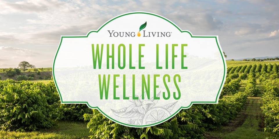 young living network marketing