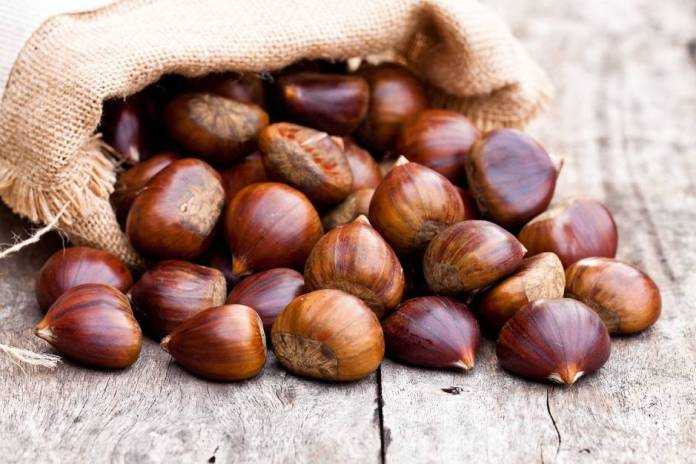 Castagne e marroni, ecco le differenze
