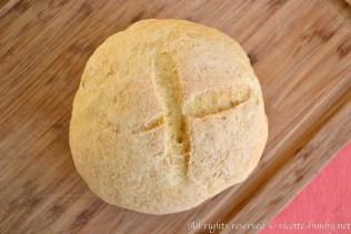 Pane di grano duro bimby 1