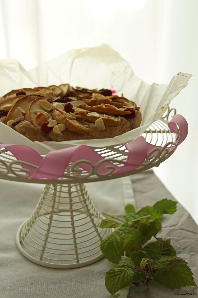 torta-mele-lamponi-apple-raspberry-cake-vegan