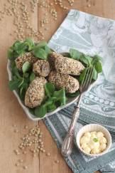 polpette-lenticchie-riso-al-forno