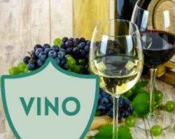 Spumanti le vinificazioni le varie fasi di produzione