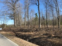 Dances Bay 20+ AC lots | The Rich Company Real Estate ...