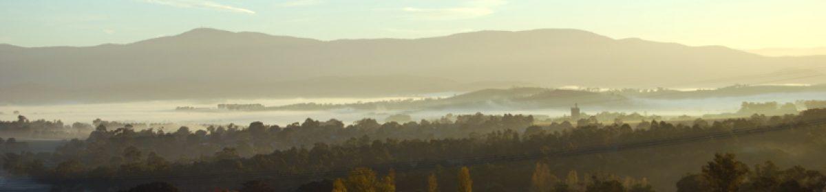 A fog-filled Yarra Valley