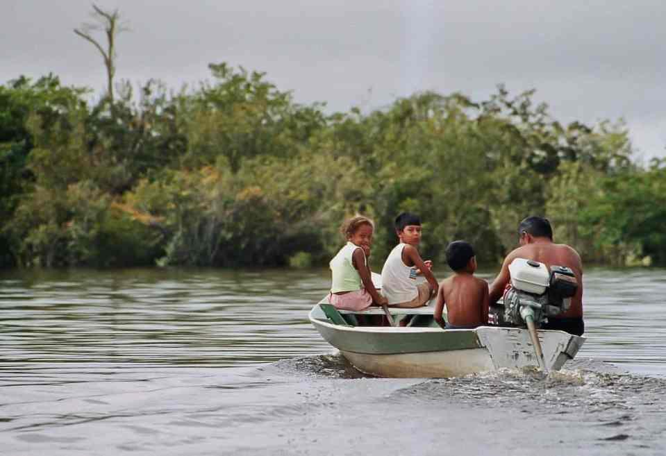 Brazilian riverlife